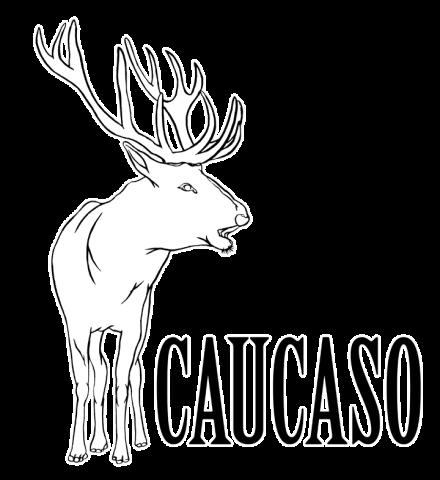 CAUCASO FACTORY – Bologna