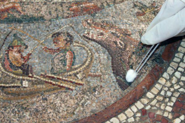 pompei coop archeologia